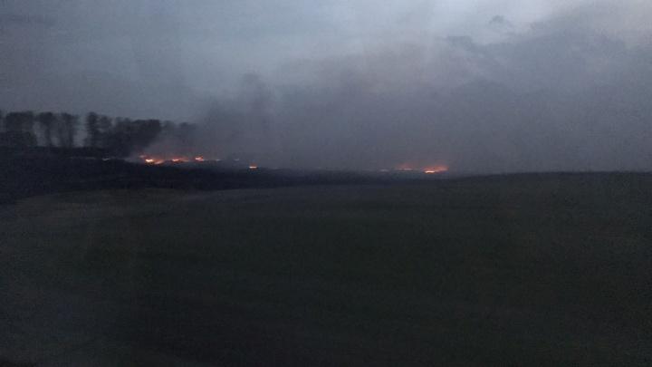 Трассу между Бердском и Искитимом заволокло дымом
