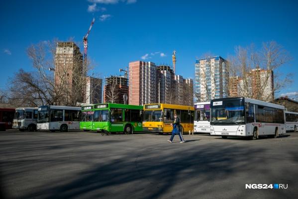 По маршруту будут ходить 6 автобусов