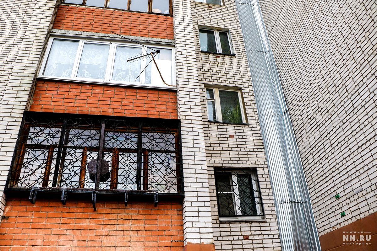 Руководитель Нижнего Новгорода Елизавета Солонченко предложила превратить синие заборы вобъекты искусства