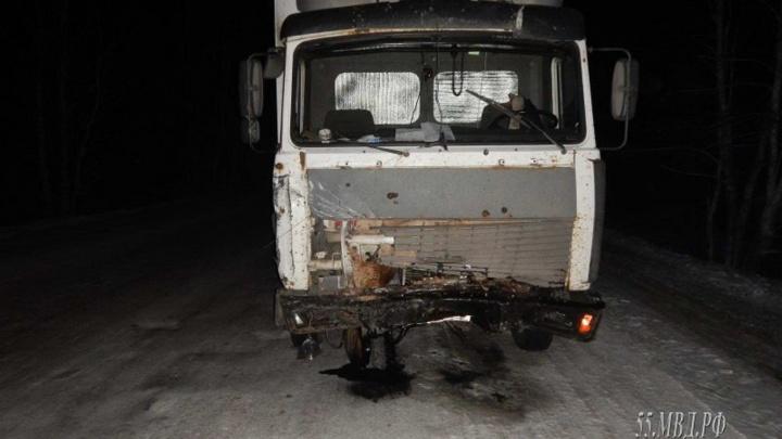 На омской трассе 21-летняя девушка-водитель выехала на «встречку» и погибла