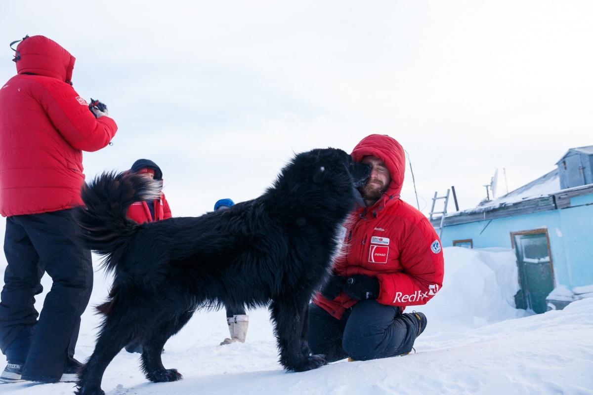 Неожиданные встречи: путешественники и собаки, обитающие на полярной метеостанции