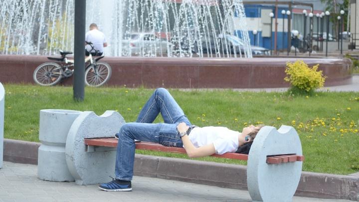 Зной и пекло: в Новосибирске задержится жара