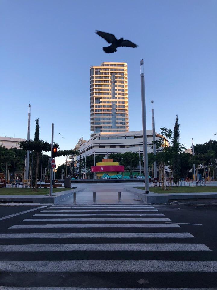 Площадь Дизенгоф в Тель-Авиве. Здесь находится кофейня, в которой работает Евгений