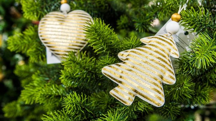 Новый год завезли: фоторепортаж с праздничной ярмарки, где продают недорогие елочки и гирлянды