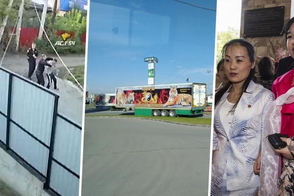 Жёсткое задержание, права животных и мемориальная доска лидеру КНДР стали самыми обсуждаемыми темами Новосибирска в начале сентября