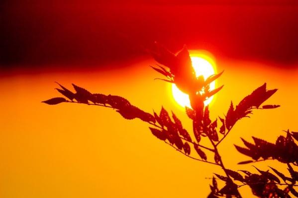 Кадры чудесного заката понравились фотографу