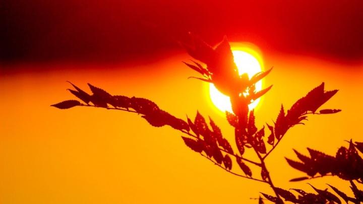 «В Волгограде закаты красивее, чем рассветы»: известный фотограф снял закат над Ангарским прудом