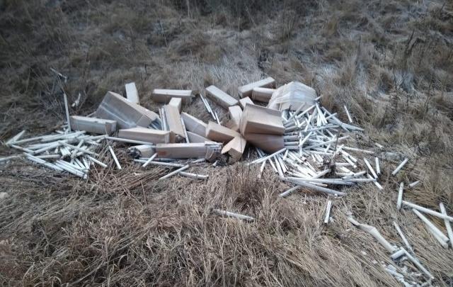 Первая категория опасности: на обочине у Толги нашли больше 200 ртутных ламп