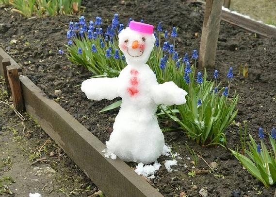 Новосибирцы налепили снеговиков на клумбах с цветами
