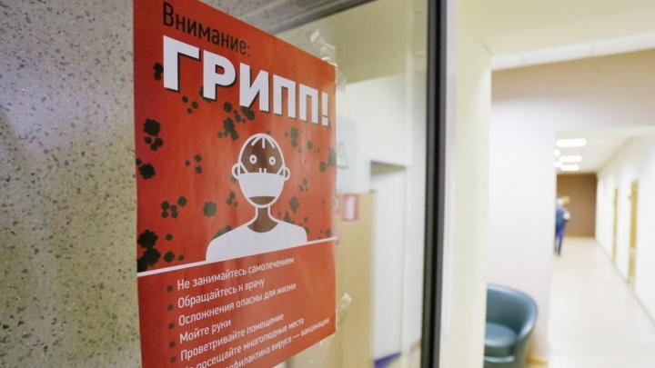 За неделю число заболевших гриппом и ОРВИ на Южном Урале выросло на треть