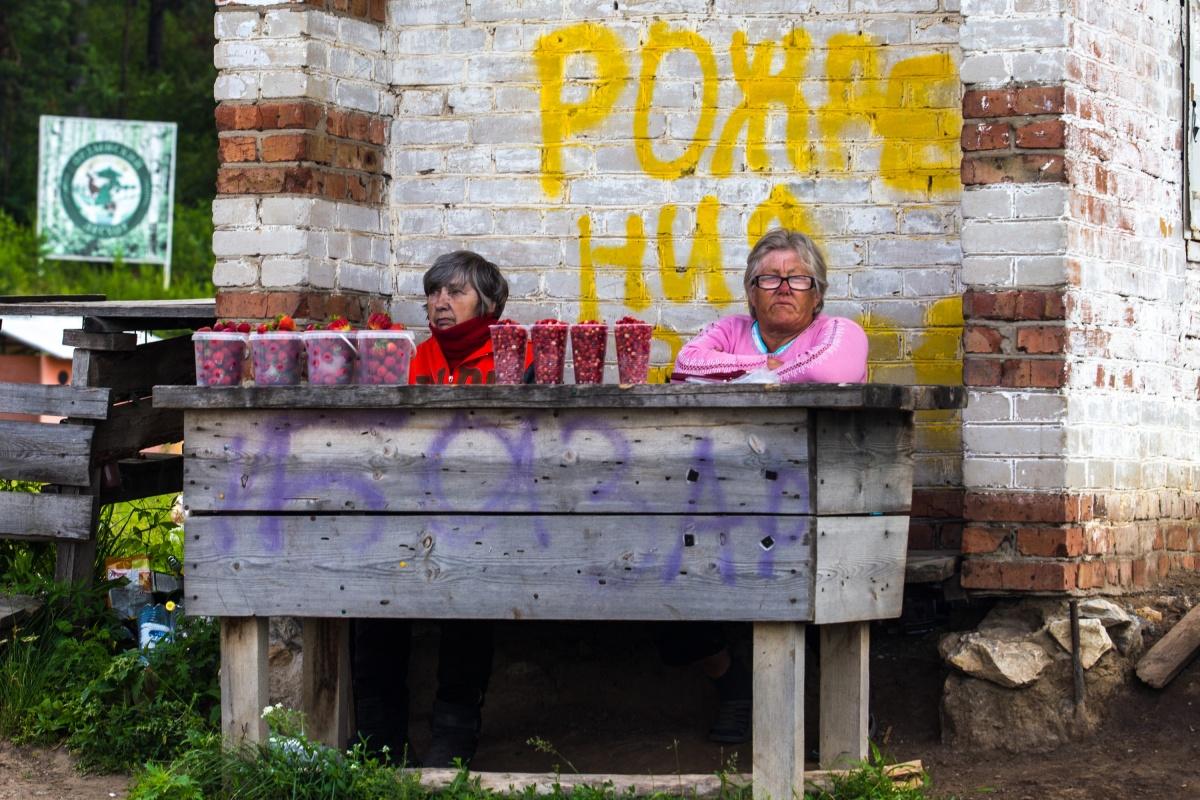 Пенсионеры Ордынки выживают за счёт туристов— продают им грибы, ягоды, травы