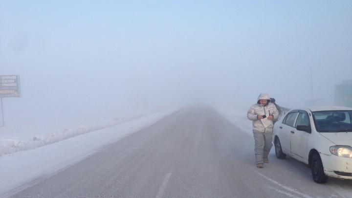 На трассе у «Путинского моста» туман осложнил видимость