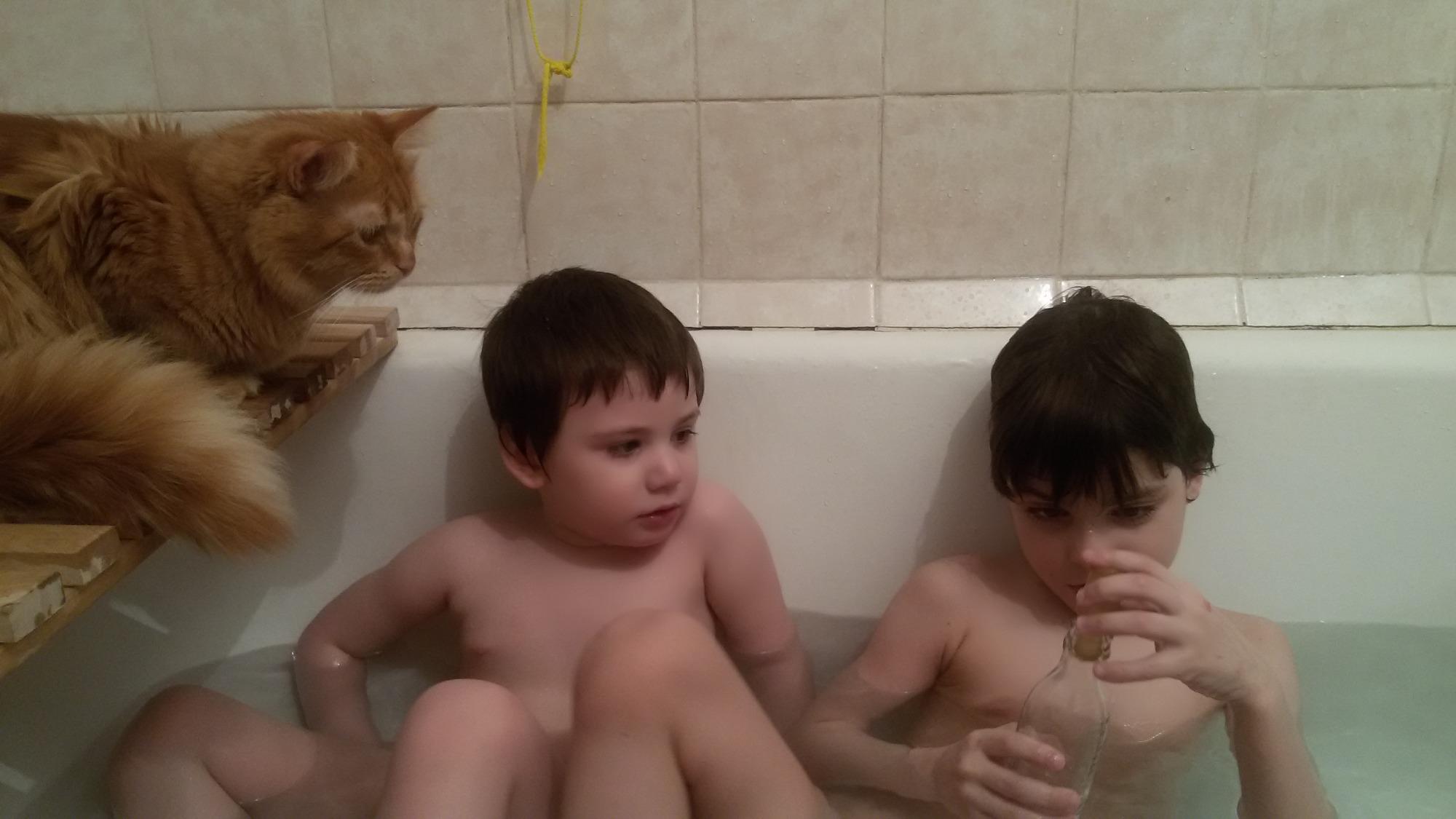 Рыжий кот Персик следит за купанием детей