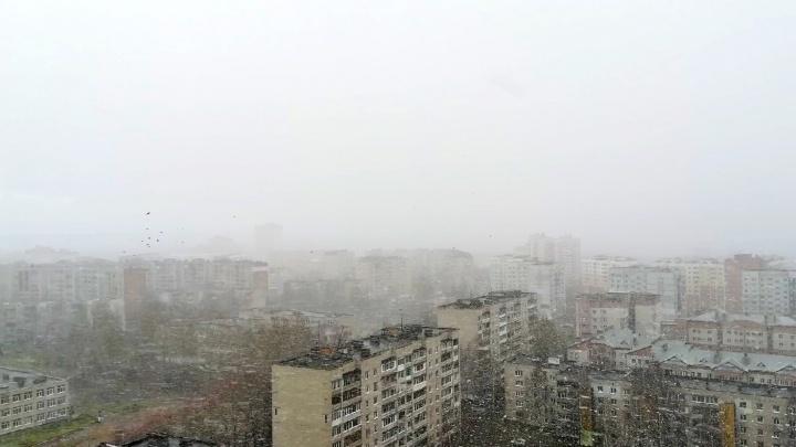 Из-за мощной циклонической системы в Ярославле резко похолодает