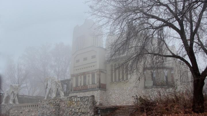 «Площадка для съемок хоррора»: самарский фотограф снял «Дачу со слонами» в тумане
