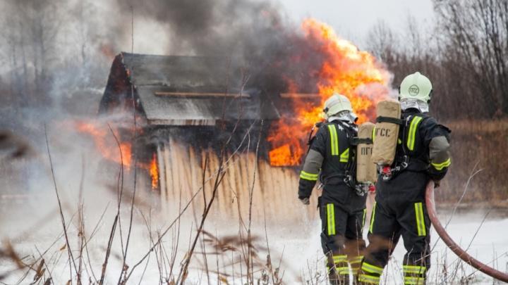 В Лешуконском районе мужчина заживо сгорел в доме родителей