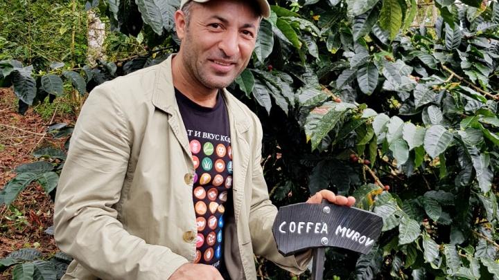 Новосибирец нашел в Коста-Рике новый сорт кофе-мутанта — растение назвали его именем