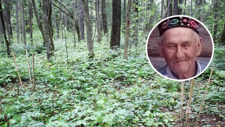 В Чусовом пропавшего пенсионера нашли погибшим — он замерз ночью в лесу
