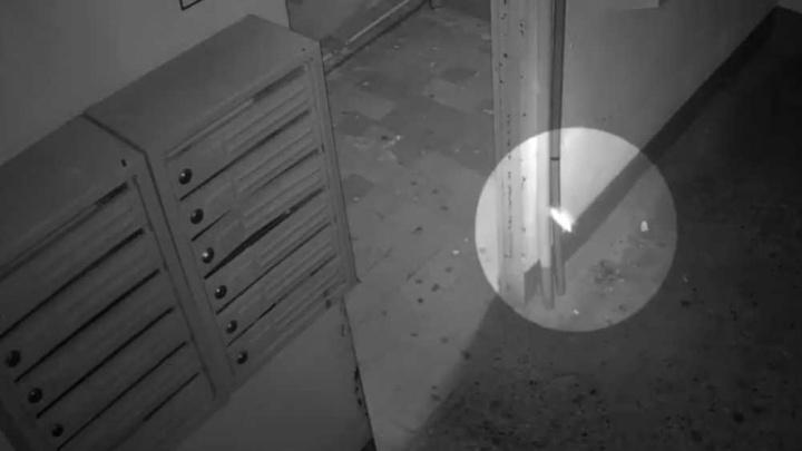 Моль или привидение: ярославцы обсуждают странное видео из подъезда