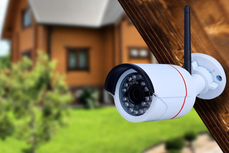 Видеокамеры с подсветкой для ночного режима помогут найти даже тех, кто таскает с грядок клубнику