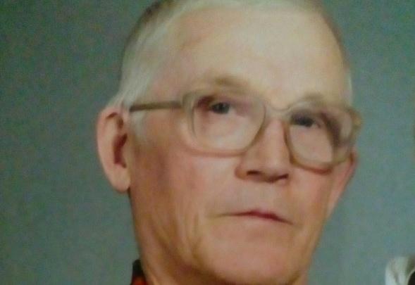 «Уехал на дачу»: в Усолье две недели идут поиски пропавшего пенсионера