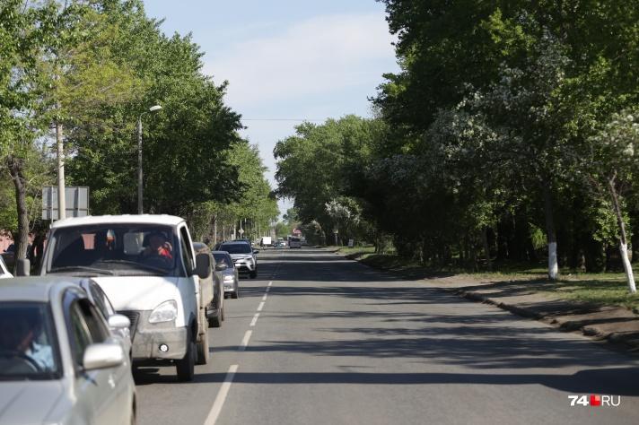 Жители выступили против вырубки деревьев на улице Дарвина