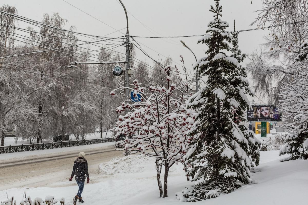 В конце недели Новосибирск накроют снегопады и метели с порывистым ветром