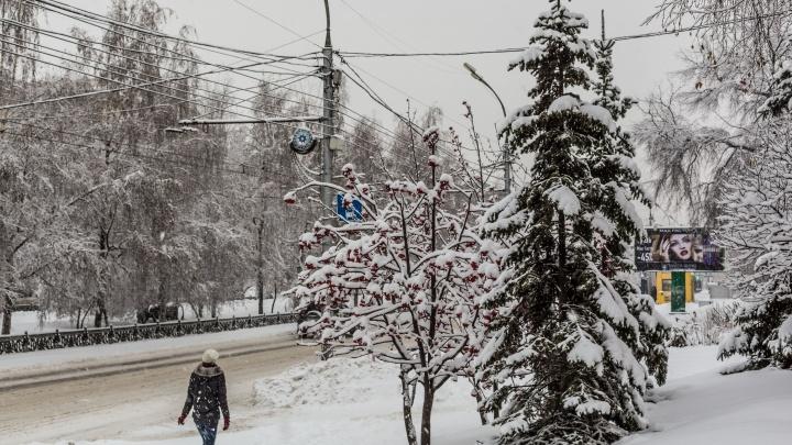 Аномальный холод придёт в Новосибирскна смену метелям и снегопадам