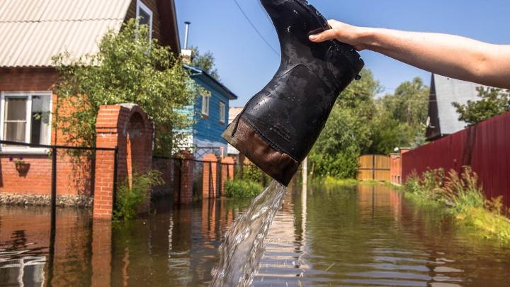 Топит каждый год: новосибирские дачники устали от паводка и скинулись по 5 тысяч на дамбу