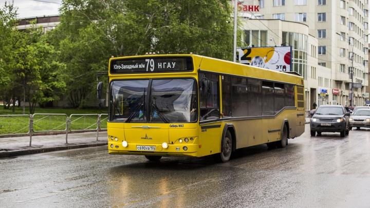 Две сотни новых автобусов появится в Новосибирске к МЧМ по хоккею