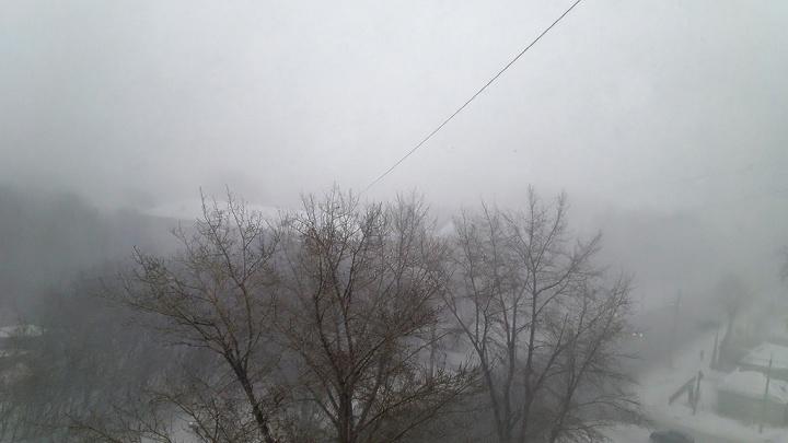 Сногсшибательный прогноз: зауральцев предупреждают об усилении ветра до 20 — 25 метров в секунду