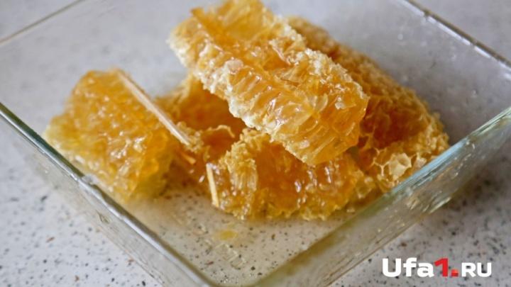 Башкирские пчеловоды: «Меда в республике практически нет»