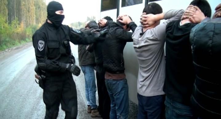 Со свалки в Верхней Пышме полицейские вывезли 71 мигранта, которые жили в домиках с кучей тараканов