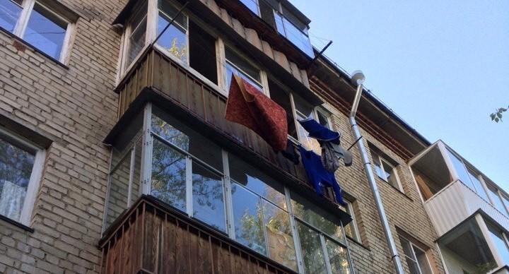 Екатеринбуржца, который выкинул с балкона собаку и котят, отправили в колонию на 5 лет
