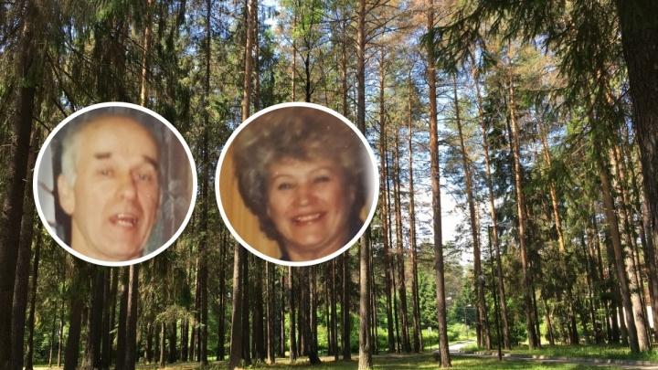 Пермяков просят помочь в поисках пенсионеров, пропавших в лесу под Жебреями