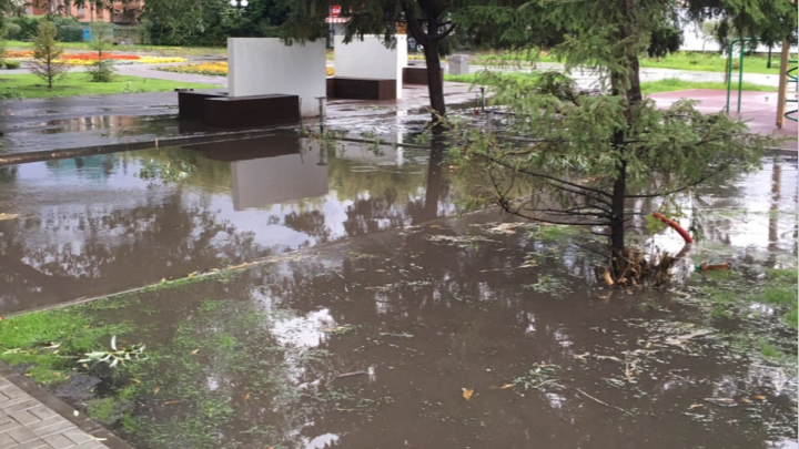 В Омске обновлённый бульвар Мартынова утонул после дождя