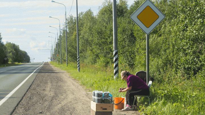 Автотрасса, обеспечивающая подъезд к космодрому Плесецк, включена в список федеральных