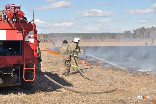 Самая главная опасность аномальной жары — лесные пожары