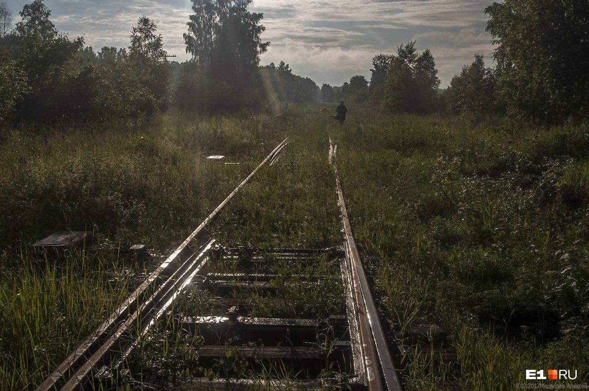 На станции «Красногвардейск» пути заканчиваются. Еще в 2015 году пути вели до Глубокого Лога. Теперь разобраны