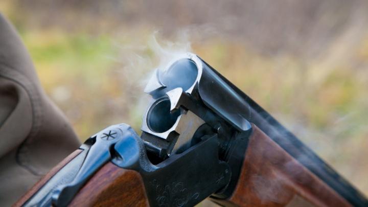 В Курганской области браконьеры застрелили десяток косуль