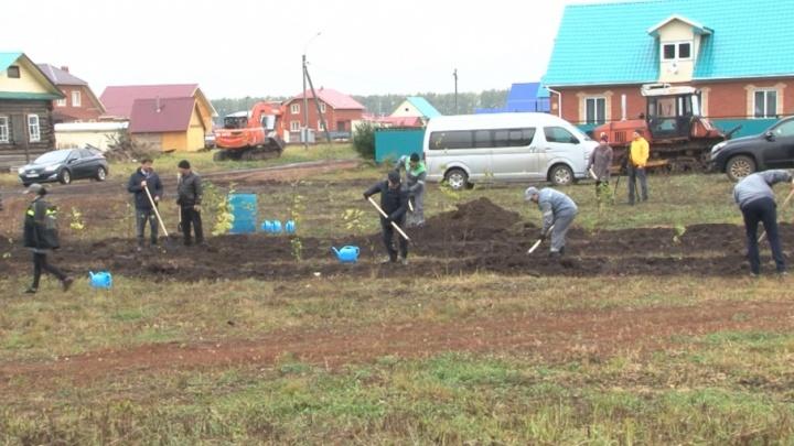 Компания «Башнефть» высадит в республике 3600 саженцев