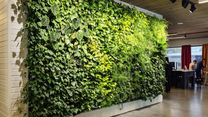 Сад на стене: пять идей дизайна интерьера, которые вдохнут жизнь в серые стены