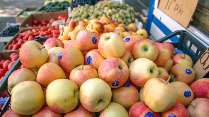 Самарские ученые научились делать одноразовую посуду из яблочного пюре