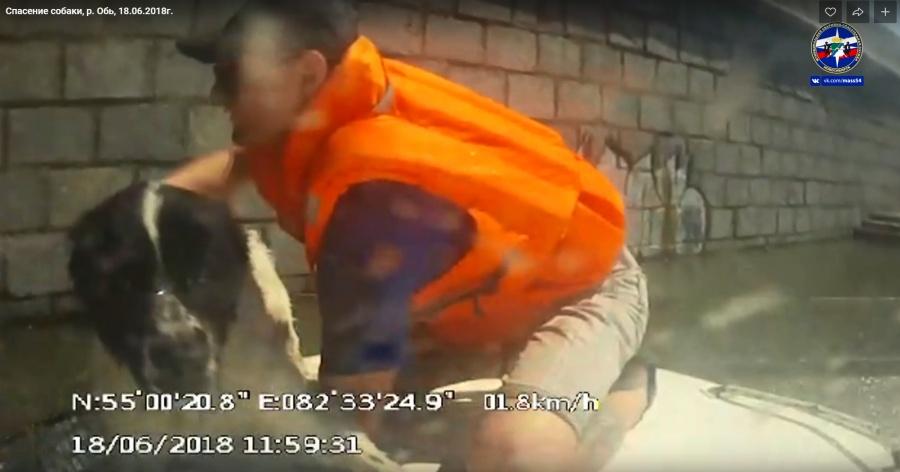 Видео мужик не успел вытащить, тетками русское снимая