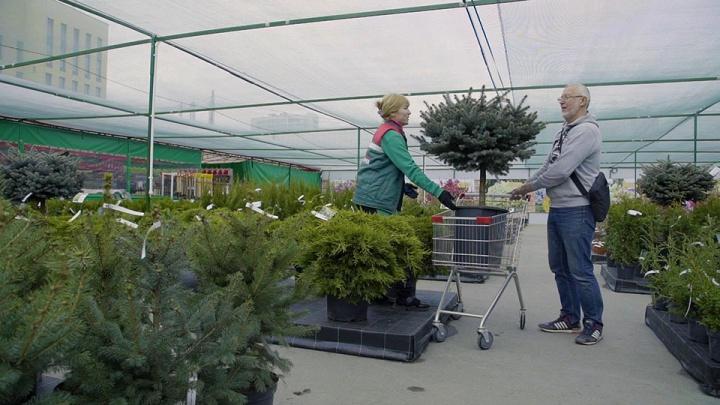 От секатора до дачной мебели: в Челябинске открылся садовый центр нового формата