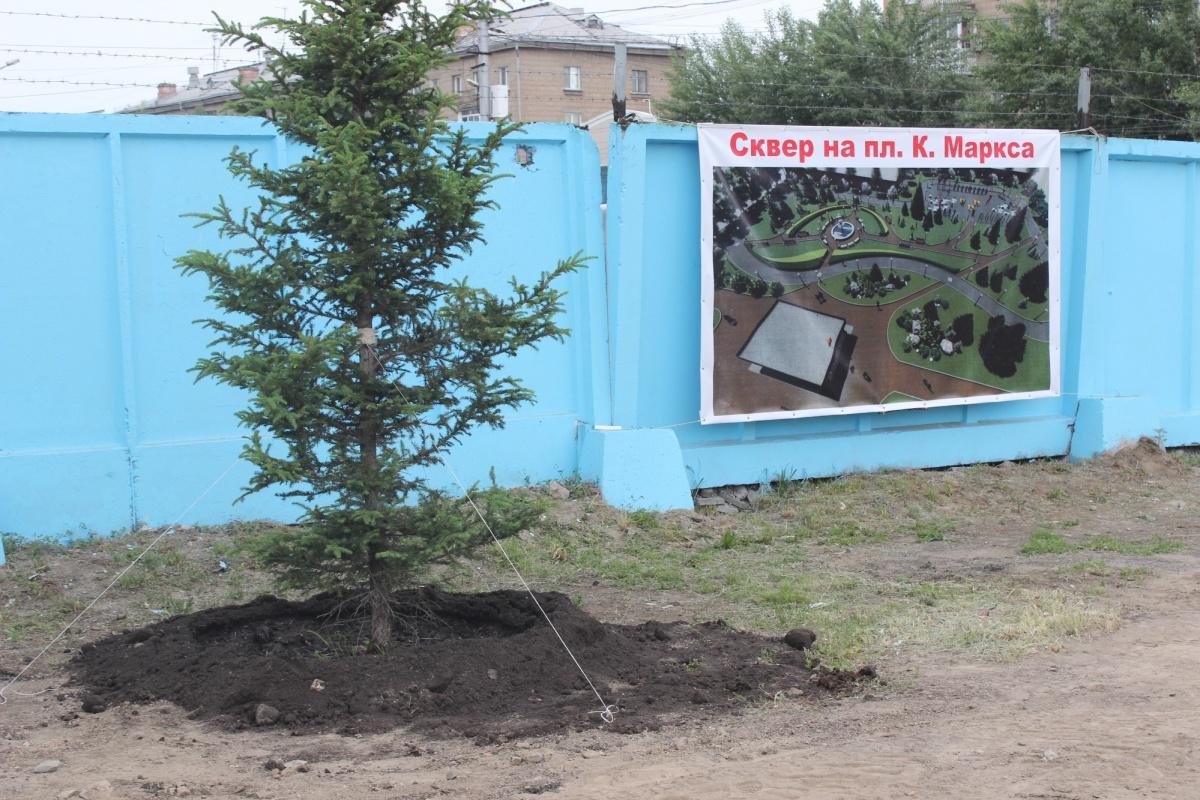 Посаженные вдоль забора деревья должны «создать фон» для будущего землеустройства. Фото Стаса Соколова