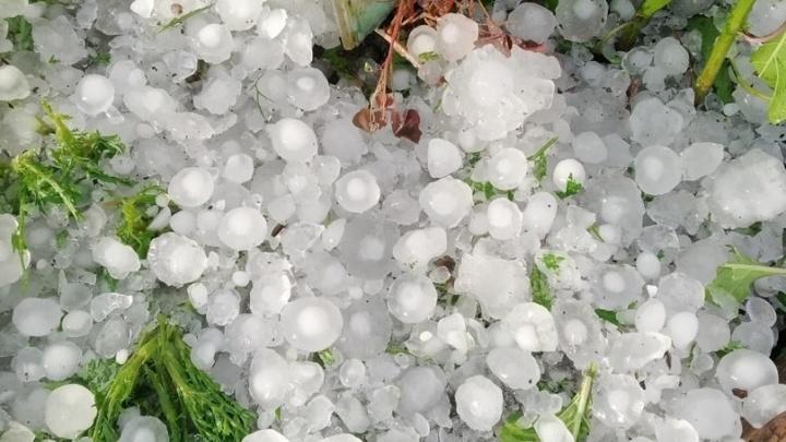 Август в Кургане начнется с ухудшения погоды: сильный ветер, гроза и град