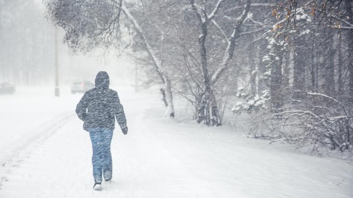 Ныряющий циклон несёт в Новосибирск метель и гололёд