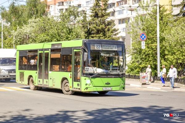 Новые автобусы будут закупать белые
