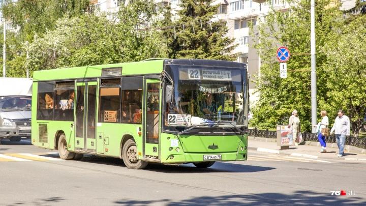 С кондиционерами: в Ярославль закупают новые автобусы на 100 миллионов рублей